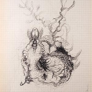 Devenir-espèce(s) - 13