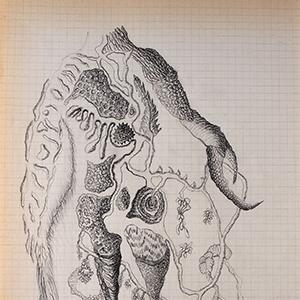 Devenir-espèce(s) - 8